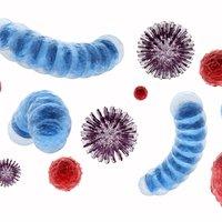 Il faut supprimer les germes, après une maladie contagieuse.
